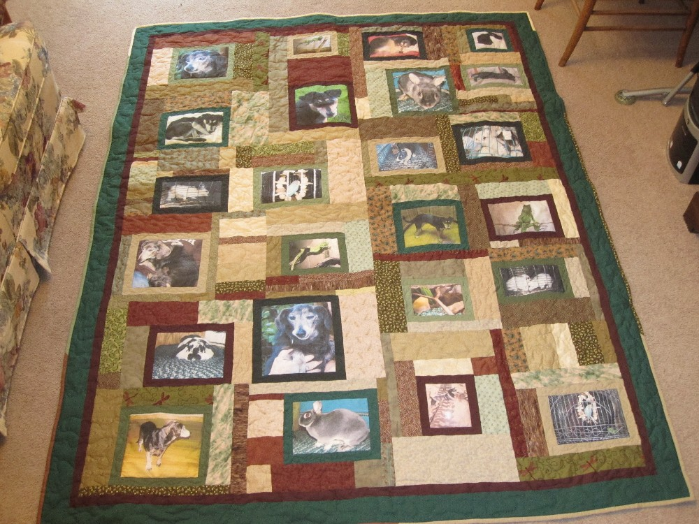Quilted Pictures Picture Quilt Photos Photo Quilts